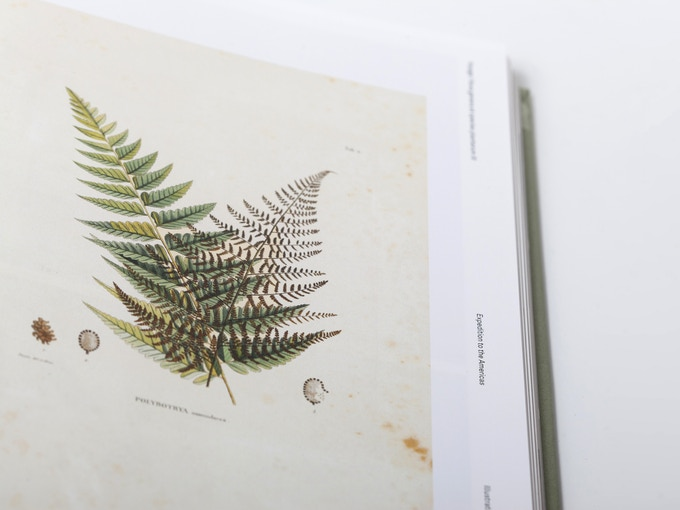 kronecker-wallis-humboldt-illustrations-book-10