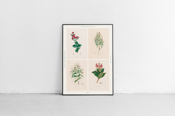 poster-flors
